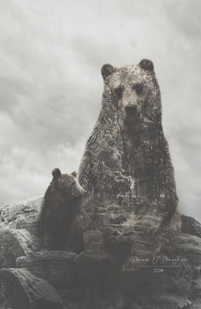 Mama Bear 2/6