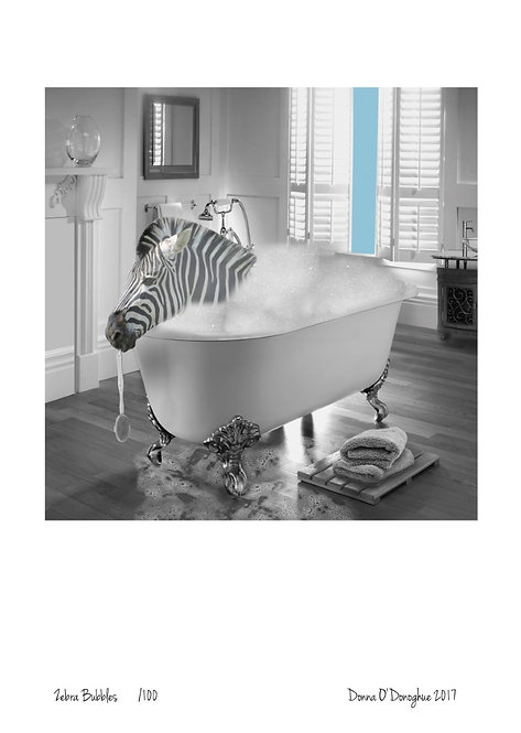 Zebra Bubbles A3