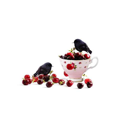 Black Robin Cherry