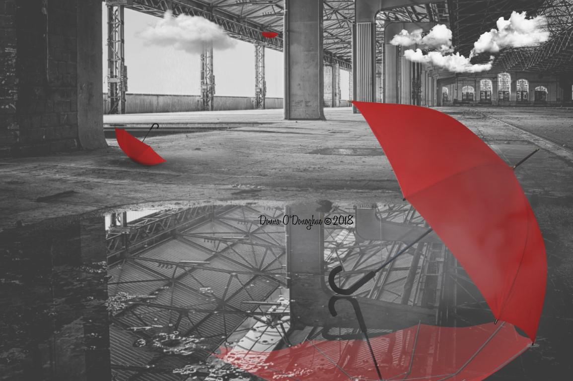 Umbrella Warehouse
