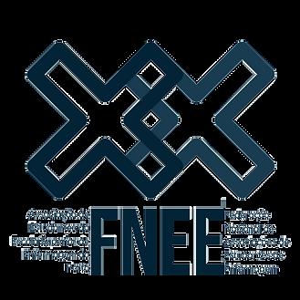logo fnee 2020.png