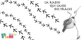 La radio qui laisse des traces-plumfm-bandeau fb.png