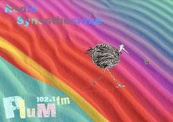 Radio Synesthésique