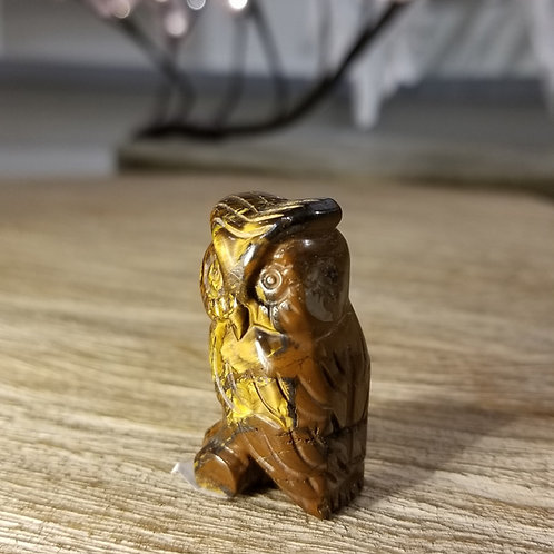 Tiger Eye Owl