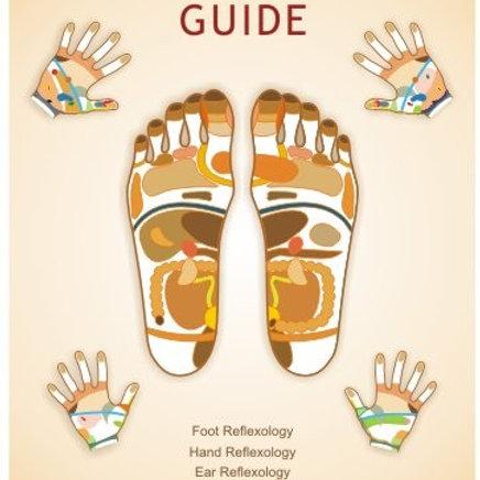 Reflexology Information Guide