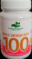 ROSA MOSQUETO.png