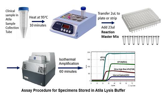 Atila Biosystem.png