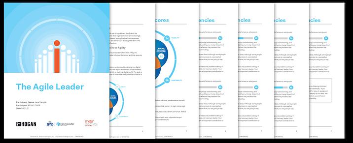 agile_leader_sample_report.png