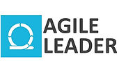 Agile Leader Logo 600 x 400.jpg