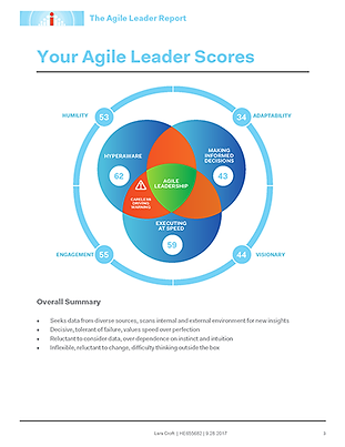 Agile-Leader-Report.PNG