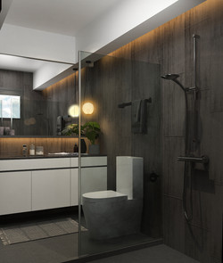 Master Bathroom 02