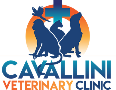 Cavallini Vet Clinic logo.png