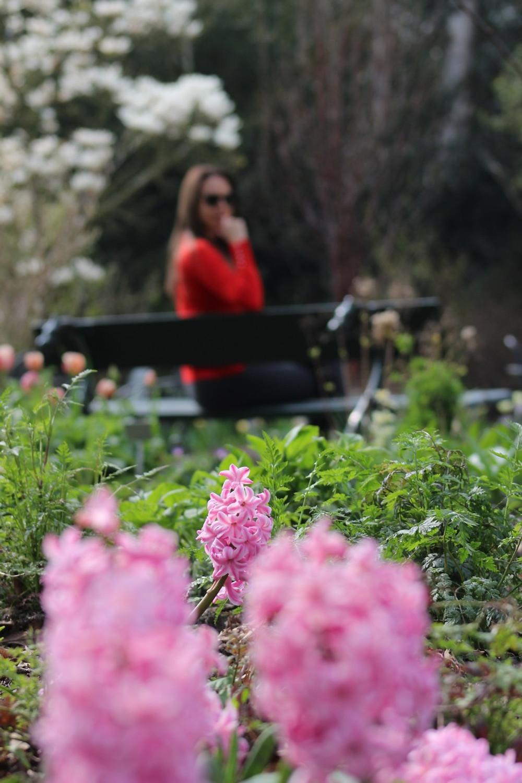 Jardins-na-Europa.jpg