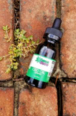 Bottle On Ground.jpg