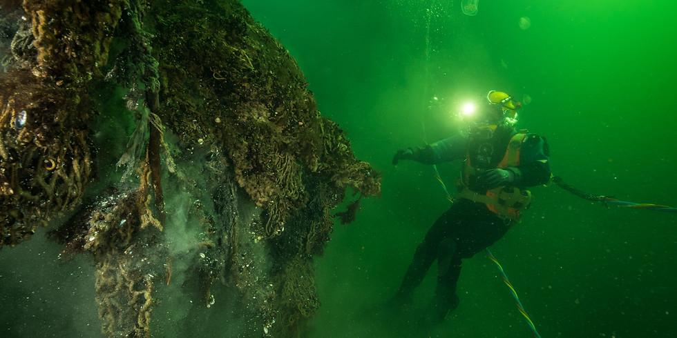 """Livestream: Gabriele Dederer: """"Geisternetze - tödliche Gefahr für unsere Meeresbewohner?"""""""