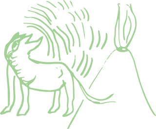 Vulkanhund_hellgrün.png