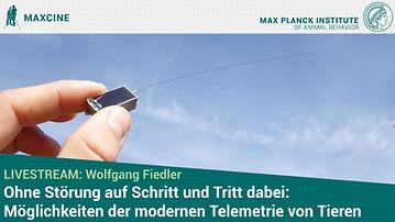 Wolfgang2 Thumbnail.jpg