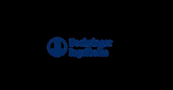 BI_CONFERENCE_KV_v.1.4_rgbberlogo.png