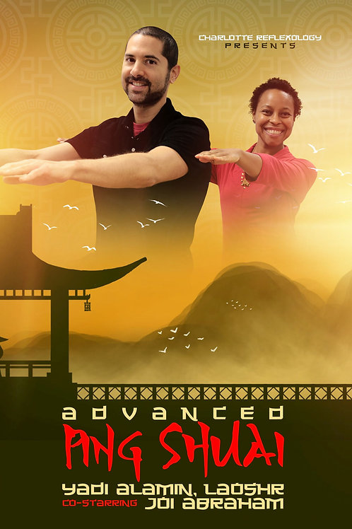 Advanced Ping Shuai DVD