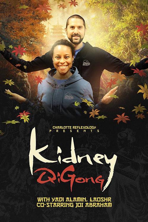 Kidney Qigong-Qigong for Fatigue!