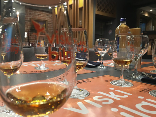 Viskiye Giriş