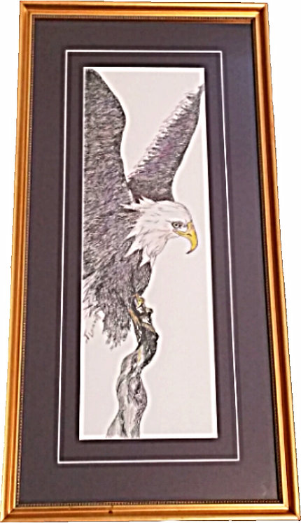 Signed Original Framed Eagle Pen/Ink Artwork