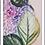 Thumbnail: Isabella De Borchgrove Italian Plate Set/Pair