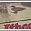 Thumbnail: Vintage Ithaca Guns Mallard Duck Advertising Sign