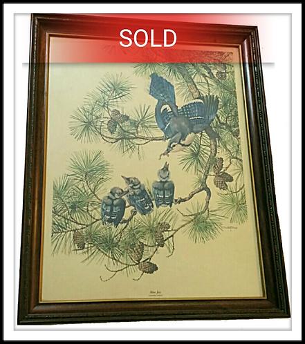Vintage E. Paxton Oliver Blue Jay Art Print Framed