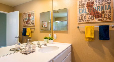 California Guest Bathroom