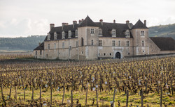 Shooting Nuits Saint-Georges by TLP-199