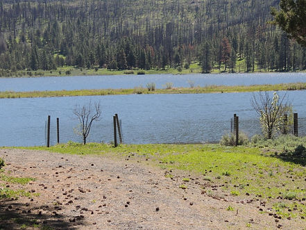 84940 dog lake loading spot.jpg