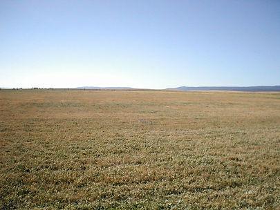 91946 hwy 140 view of field.jpg