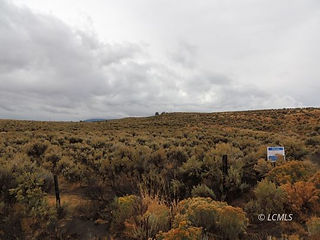 45+ acres off of hqy 140.jpg