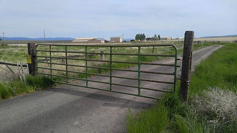 91946 hwy 140 view from gate.jpg