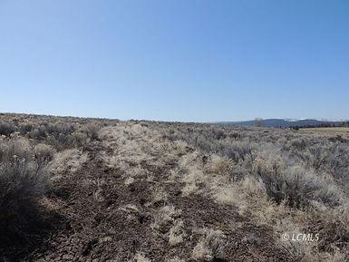 10 acres off of High 140 west.jpg