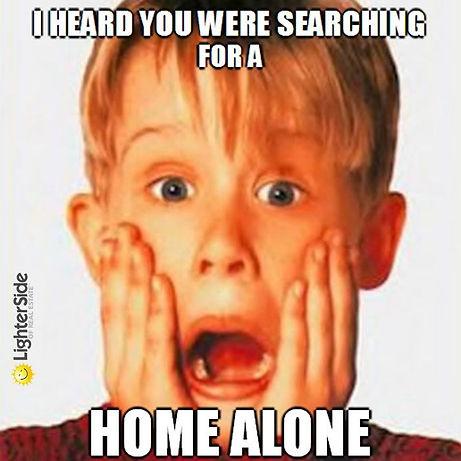 home alone.jpeg