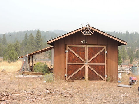 88861 Drews Gap Ln shed.jpg