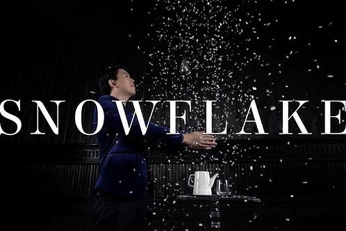Snowflake - The snowstorm teapot by Wenzi Magic, & MS Magic (Pre-order)