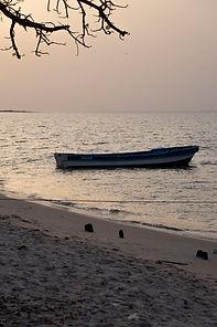 Senegal_541.jpg