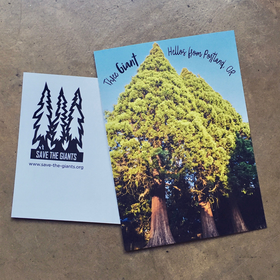 Save the Giants: Postcards for a Good Cause