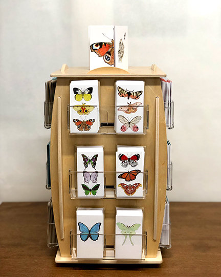 Sky - Butterfly/Moth Mini Cards 6-Pack