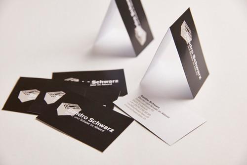 Logo & Visitenkarten / Sandro Schwarz, Maurer und Schaler im Akkord