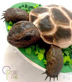 - Gâteau personnalisé anniversaire 3D enfant - Thème Tortue