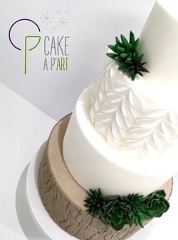 Wedding Cake Pièce montée Mariage - Thème Bois et plantes grasses