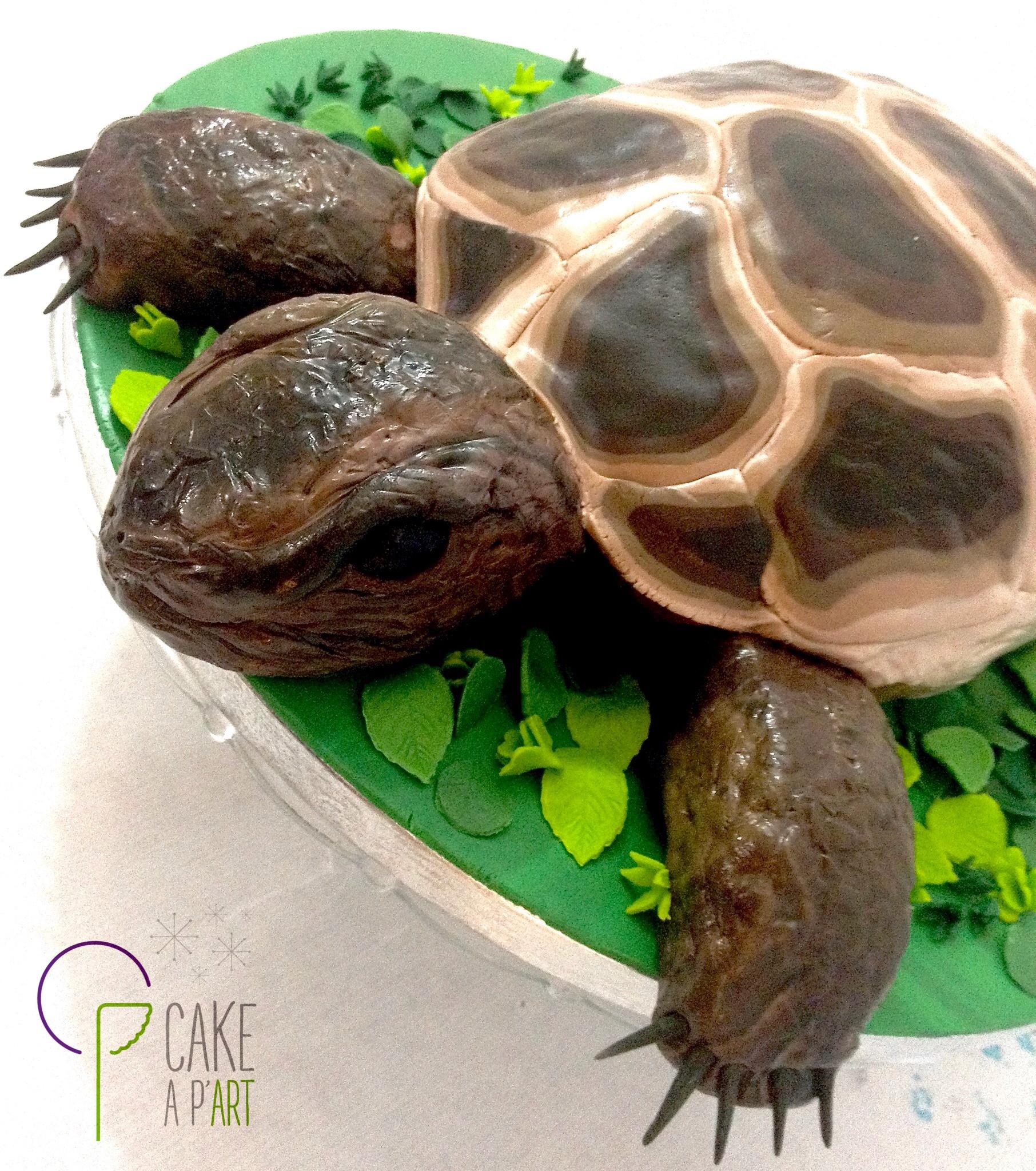 Gâteau sur mesure sculpté 3D anniversaire - Trompe l'oeil Tortue