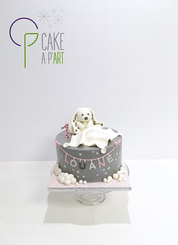 - Gâteau personnalisé anniversaire enfant - Thème Banquise Doudou