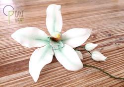 Décor en sucre gâteaux personnalisés - Mariage fleurs Orchidée