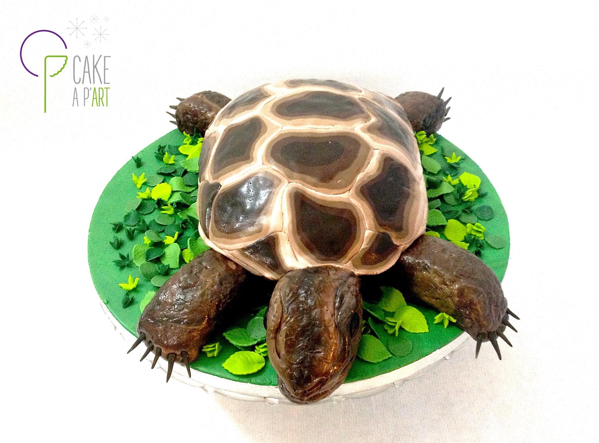 Gâteau sculpté 3D Tortue Cakeapart