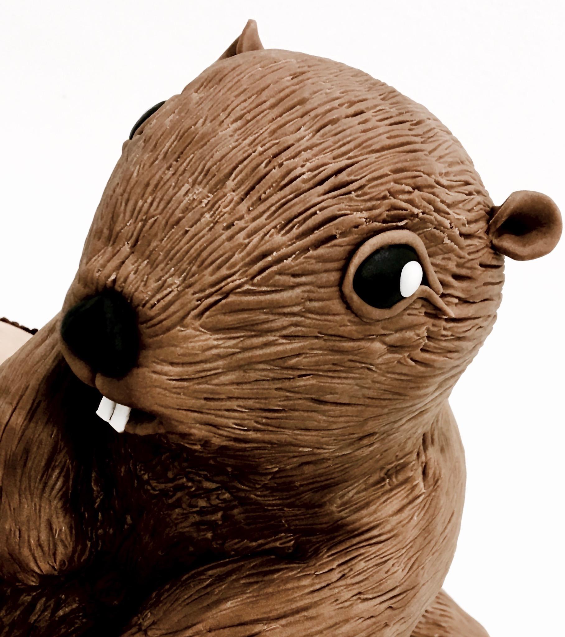 Gâteau sur mesure sculpté 3D anniversaire - Trompe l'oeil Marmotte